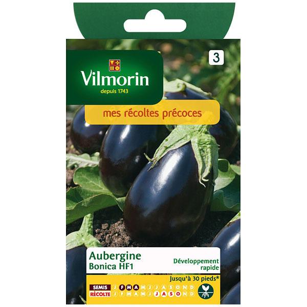 Aubergine bonica hf1 c t en ligne for Site jardinerie en ligne
