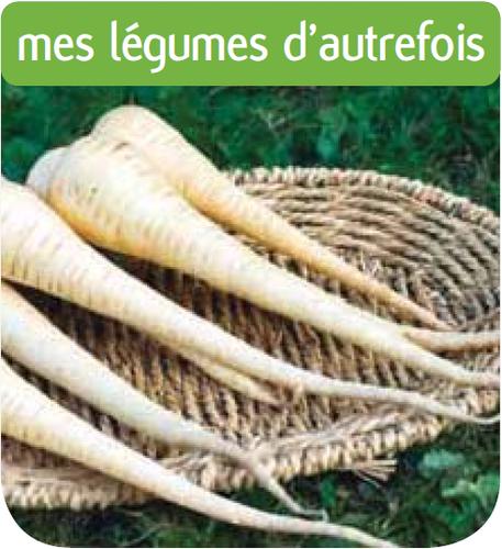 Les semences potag res les l gumes d 39 autrefois for Jardineries en ligne