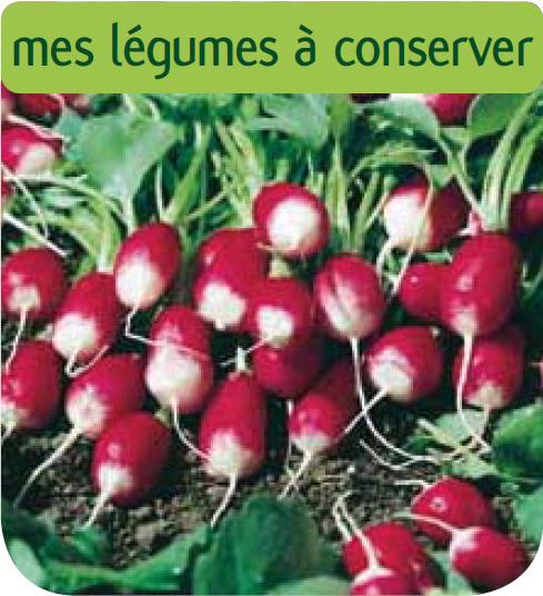 Cote jardin jardinerie en ligne radis pontvil for Jardinerie en ligne