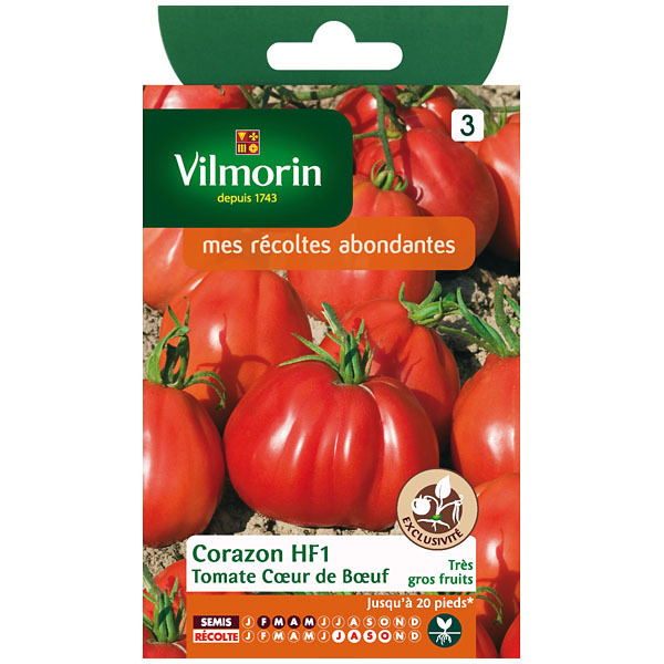 tomate coeur de boeuf corazon hf1 cote jardin jardinerie. Black Bedroom Furniture Sets. Home Design Ideas