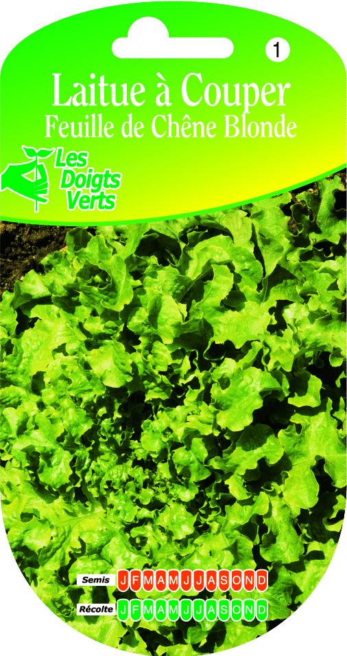 Cote jardin laitue feuille de chene for Jardinerie en ligne catalogue