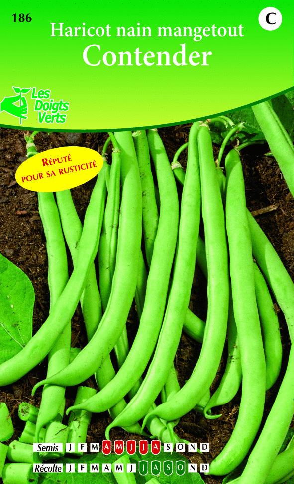 Cote jardin haricot nain contender jardinerie en ligne for Site jardinerie en ligne