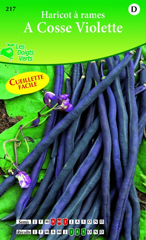 Cote jardin haricot rame cosses violettes jardinerie for Jardinerie en ligne catalogue